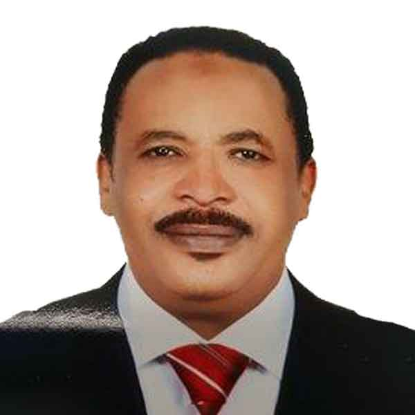 Abdulaziz Bashir El-Sheikh Edrees