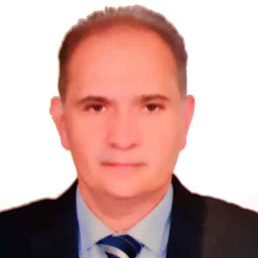 Amin K Ammar