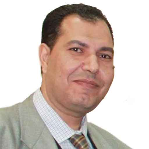 Mohamed Fawzy Mohamed El Safty
