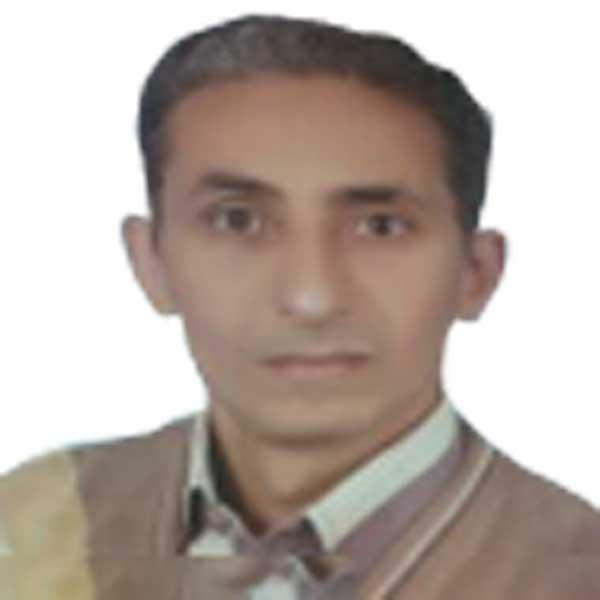 Prof Nabil Ibrahim El Sheery